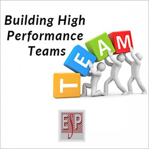 Управување со тимови со високи перформанси